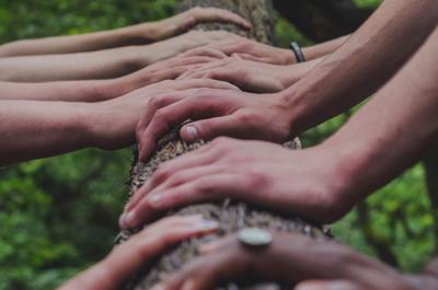 Evaluating Organizational Culture